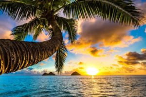 What are the Best Places to visit in Hawaii